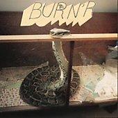 burnr-lee-gull-cd-cover-art